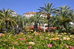 Garten in Cannes in Frankreich lizenzfreie stockfotos
