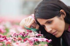 Garten-Center, der sorgfältig Blumen trimmt Lizenzfreie Stockfotos