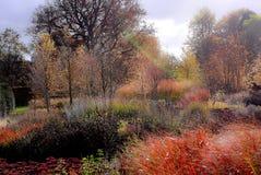 Garten in den Herbstfarben Stockbild