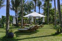 Garten, der an der tropischen Rücksortierung landschaftlich verschönert stockbild
