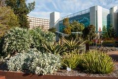 Garten der Gesundheit Lizenzfreies Stockbild