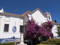 Garten der Kirche von Santa Luzia in Lissabon Portugal Lizenzfreies Stockfoto
