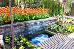 Garten der Tulpen und des Wasserfalls Stockfotografie