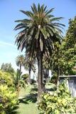 Garten des Achilleions-Palastes (Korfu, Griechenland) Lizenzfreie Stockfotos