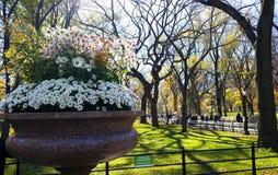 Garten des Blumenvase öffentlich Lizenzfreie Stockbilder