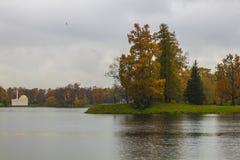 Garten des Catherine-Palastes im St. Petersburg stockbilder