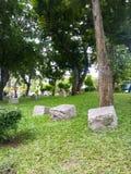 Garten des grünen Grases und Stein, wenig Park in der Stadt Stockfotos