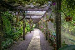 Garten des schlafenden Riesen stockfotos