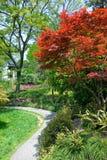 Garten des traditionellen Chinesen Stockbilder