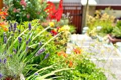 Garten-Detail Stockbilder