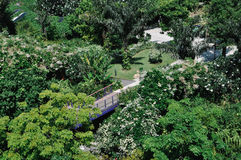 Garten durch den Schacht Lizenzfreie Stockfotos