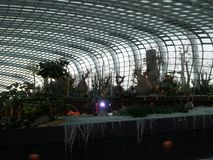 Garten durch den Schacht Stockfotografie