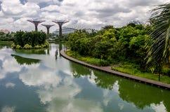 Garten durch den Schacht, Singapur Lizenzfreie Stockbilder