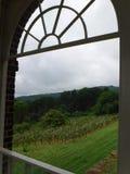 Garten durch Fenster Stockbilder