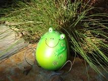 Garten-Frosch Lizenzfreies Stockfoto