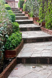 Garten-Fußweg Stockfoto