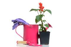 Garten-Gegenstände Stockfotografie