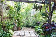 Garten-Gehweg im Erholungsort, Thailand lizenzfreie stockfotos