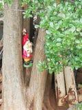 Garten Gnome stockfotos