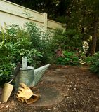 Garten-Hilfsmittel im Waldgarten Lizenzfreie Stockbilder