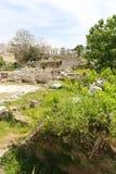 Garten im Athene Stockfotos