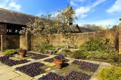 Garten im Frühjahr Stockfotografie