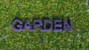Garten im Purpur Stockfotos