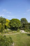 Garten im Srping Stockfotografie