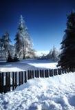 Garten im Winter Stockfotografie