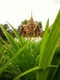 Garten innerhalb des thailändischen Tempels Stockbild