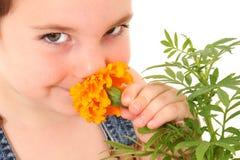 Garten-Junge Lizenzfreie Stockbilder