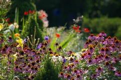 Garten lebendig mit Farbe lizenzfreie stockfotografie