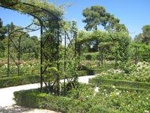 Garten in Madrid stockfotos