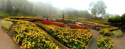Garten Mae Fahrenheit-Luang stockfoto