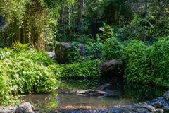 Garten mit Anlagen stockbild