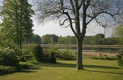 Garten mit Ansicht Lizenzfreie Stockfotografie