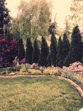 Garten mit Bäumen, Blumenbüsche lizenzfreies stockbild