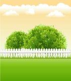 Garten mit Baum Lizenzfreies Stockfoto