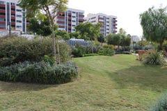 Garten mit Baumanlagen und -rasen stockfotografie