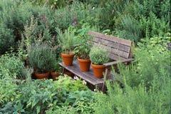 Garten mit Kräutern stockfoto