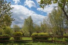 Garten mit Zaun und Hecke im Frühjahr lizenzfreie stockfotos