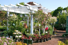 Garten-MittePergola Lizenzfreie Stockbilder