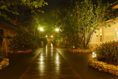 Garten nachts Lizenzfreies Stockfoto