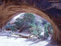 Garten-Oase unter Navajo-Bogen Stockfoto