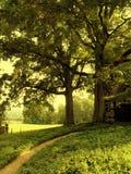 Garten-Pfad Lizenzfreie Stockfotografie