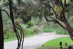 Garten PFAD Stockbilder