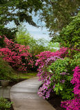 Garten PFAD stockbild