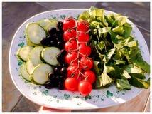 Garten-Salat Lizenzfreies Stockbild