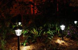 Garten-Solarlichter in der Dunkelheit Lizenzfreies Stockfoto