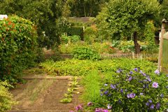 Garten am Sommer Lizenzfreies Stockfoto